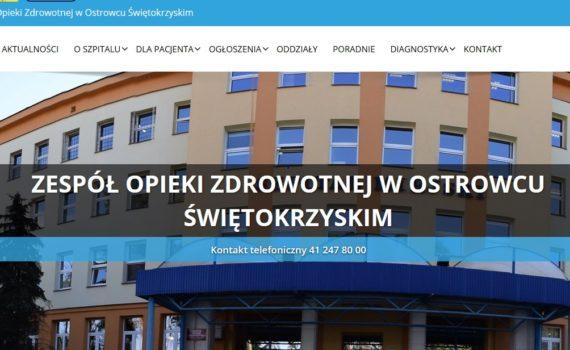 zrzut ekranu nowej strony www